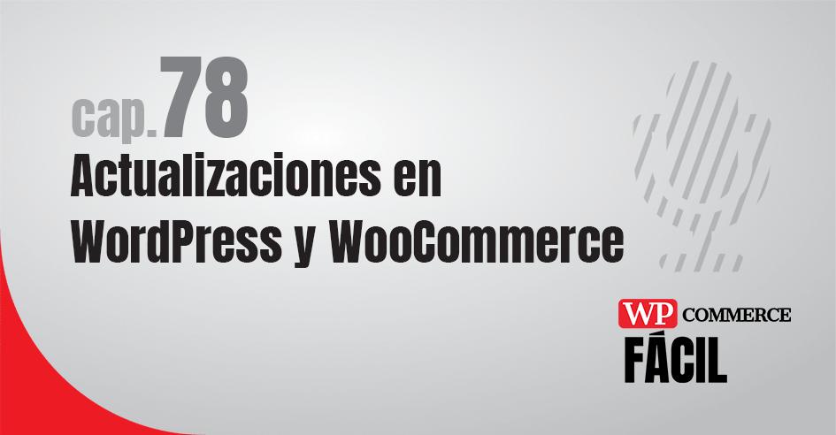 Capítulo 78 Actualizaciones de WordPress y WooCommerce